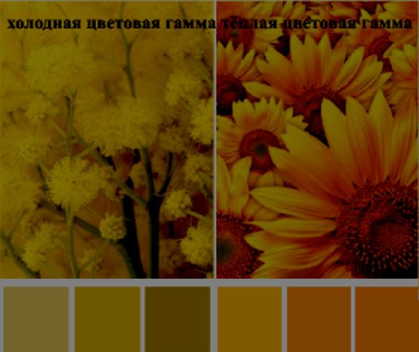 Сочетание цветов в одежде с желтым цветом