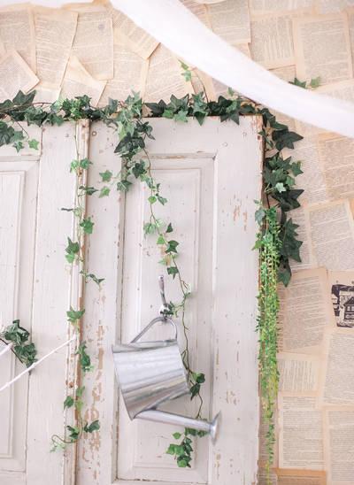 Яркие тона - зелёный плющ и белая дверь
